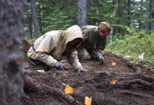 На даче найдены солдатские кости