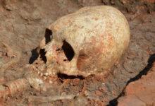 Следствие изучит захоронение в Карелии